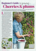 Main image for feature in Amateur Gardening' 18th Feb 2017
