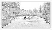 Snow at RHS Wisley Garden