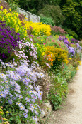 Summer Herbaceous Border
