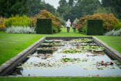 The Lily Pond, Waterperry Gardens