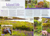 W I Life Feature - Sunningdale Gardens