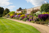 Herbaceous Border, Summer