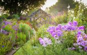 Shropshire Garden