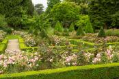 An English Summer Garden