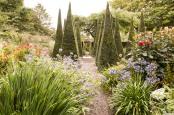 The Well Garden