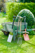 Garden tolls and vintage wooden wheelbarrow