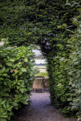 Come into the Garden Maud