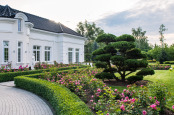 Summer morning in formal garden