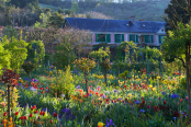 Claude Monet's house and garden in springtime