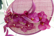 Pink Phalaenopsis 'Moth Orchid' decorating a ladies hat.
