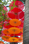 Paper Chinese Umbrellas