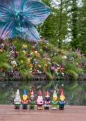 Celebrity Garden Gnomes