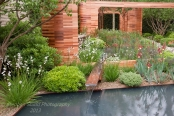 Joe Swift Garden