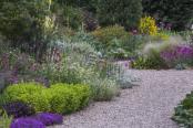 Beth Chato dry garden