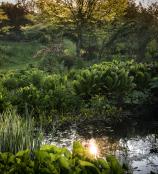 Stockton Bury gardens