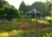 Piet Oudolf's Millenium Garden at Sunrise