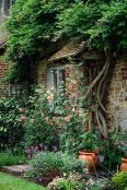 The National Garden Scheme welcome back visitors, June 2020