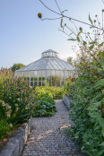 Glasshouse in the Global Growth Vegetable Garden