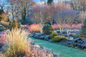 The Winter Garden at The Bressingham Gardens