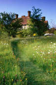 The meadow at Great Dixter