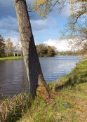 Wotton Wonderland