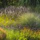 Sunny Prairie Garden
