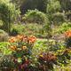 Victorian Walled Garden