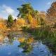 Goltho Garden Pond
