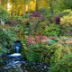 Waterfall_and_Dark_Pool_in_an_October_Garden