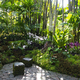 A quiet spot for two surrounded by orchids and ferns